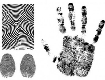fingerprint-vector-174602