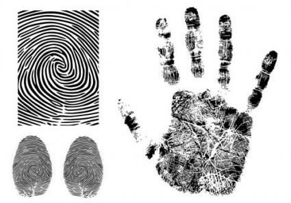 fingerprint-vector-174602