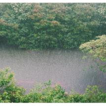 การคำนวณโอกาสที่ฝนจะตก