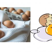 ไข่ดิบ ไข่ต้มเราจะแยกกันอย่างไร