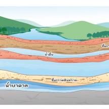 น้ำใต้ดิน ระวังอย่าให้เกิดมลพิษ