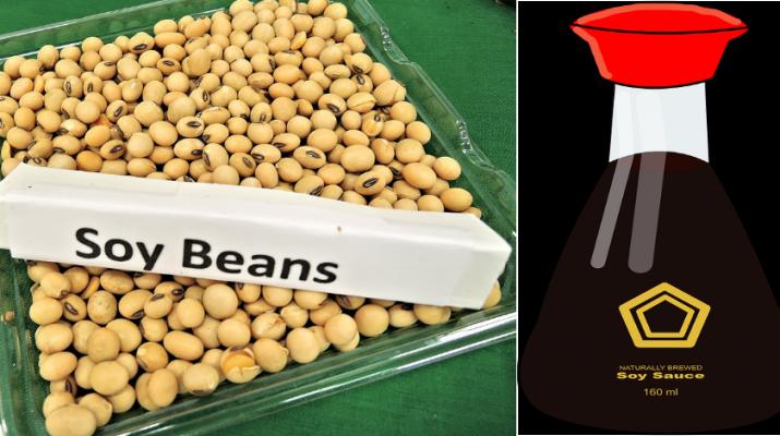 soy-beans-saurce
