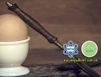 egg-2